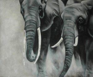 12 Charge des 2 éléphants