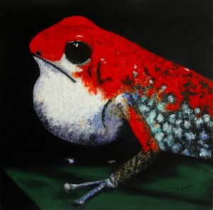 14 grenouille rouge