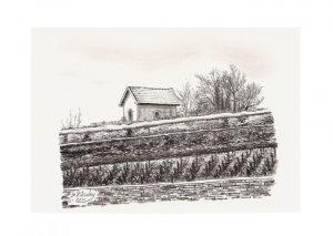 Abri dans les vignes - Meursault - © B. Vintousky