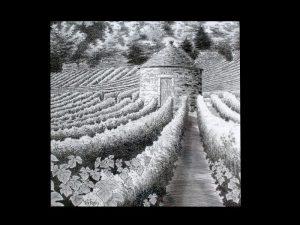 Cabotte - Côtes de Nuits - © B. Vintousky