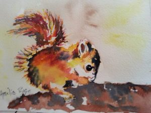chaton - aquarelle (2)